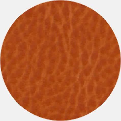 Iguana Thermo A706 Agenda Orange