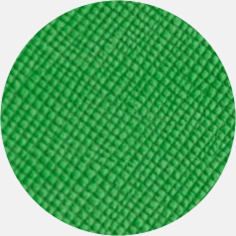 Silhouette D790 Agenda Vert